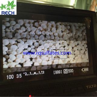 大粒鋅33% 2-4mm