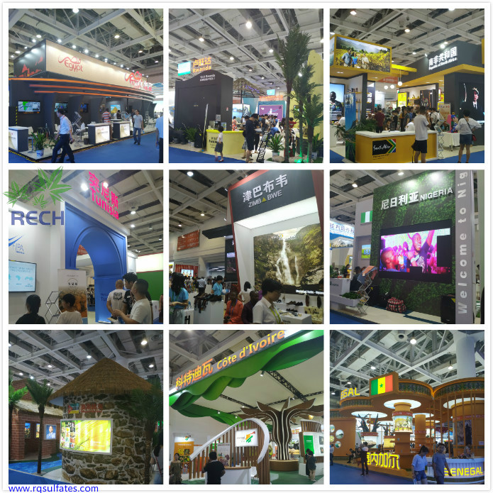 China-Africa Economic and Trade Expo3